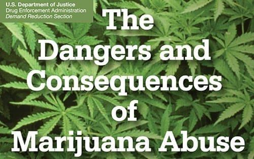 DEA marijuana information document