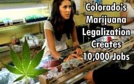 Marijuana dispensary worker