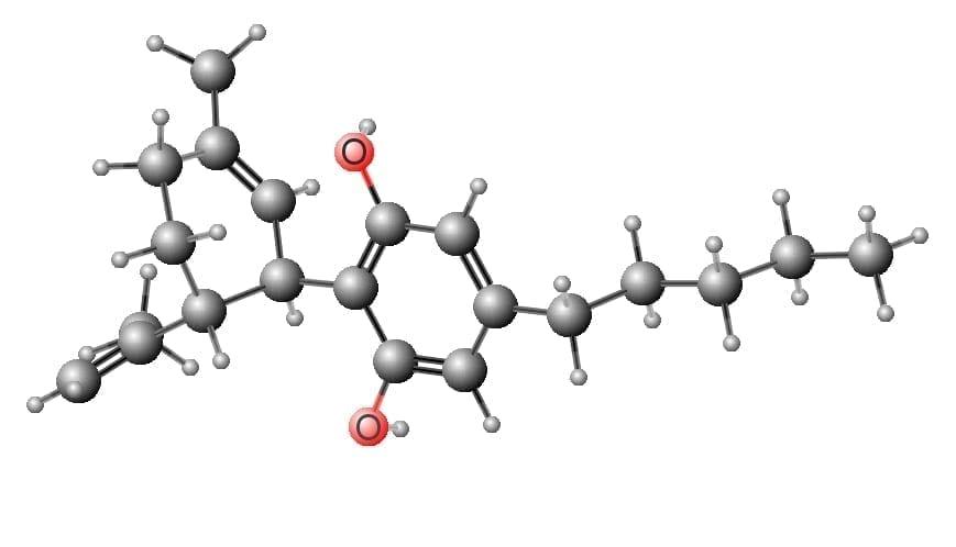 Cannabidiol Molecule