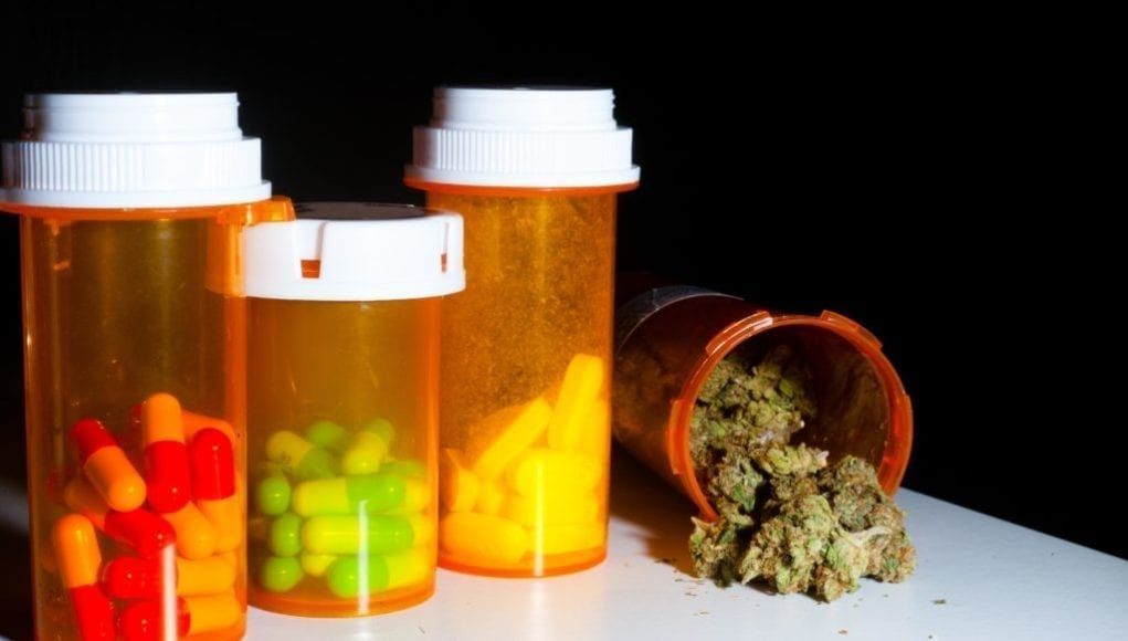 Painkillers or medical marijuana?