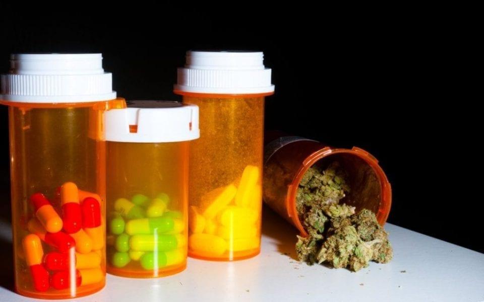 Painkillers or medical marijuana?