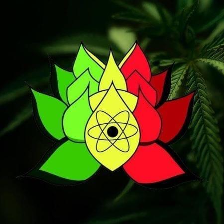 New Age Botanicals Logo Image