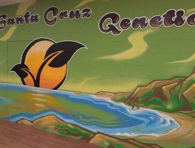 Wall Painting At Santa Cruz Genetics