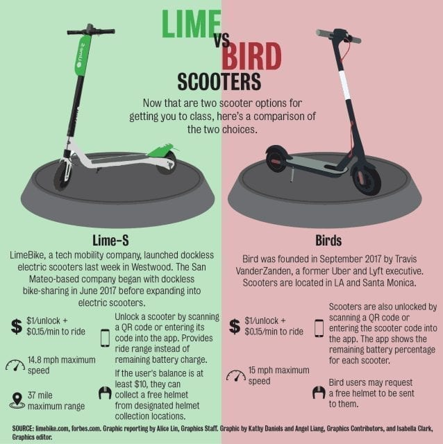 bird vs lime infographic