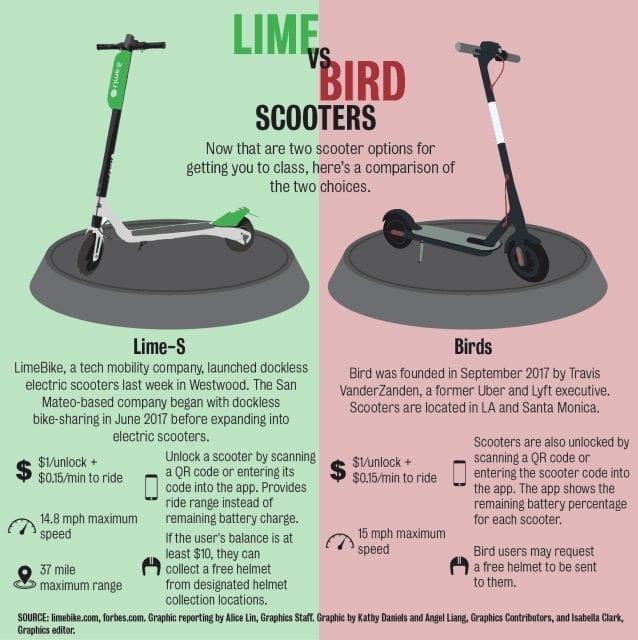bird vs lime infographic