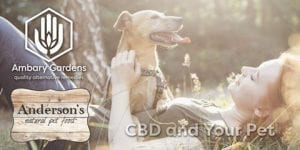 CBD Benefits for your pets