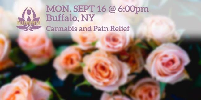 new york marijuana events