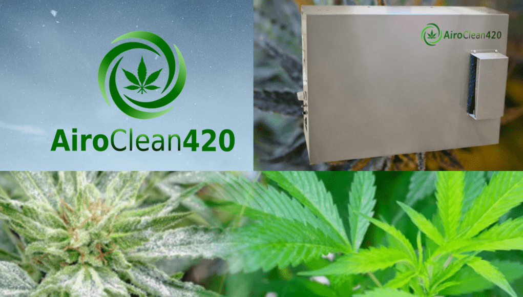 AiroClean420 review
