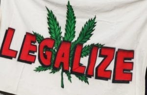 legalization on the ballot
