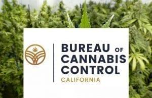 California BCC